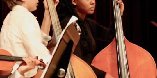 Youth orchestra to perform Feb. 28 at Bell Tower